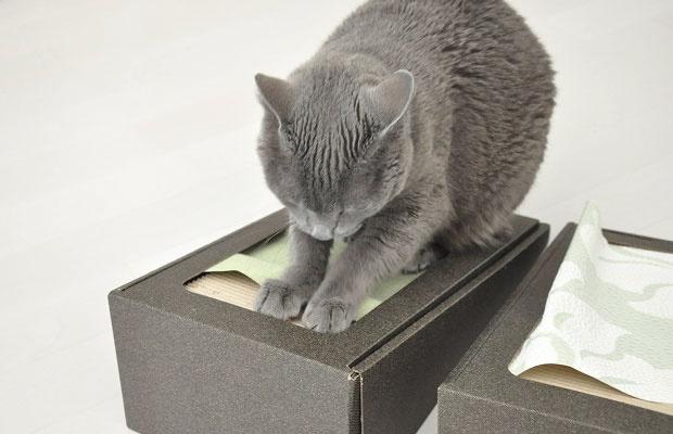 猫が「爪とぎしたがらない壁紙」に変える
